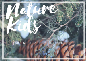 Nature Kids: Winter Edition. An online course to teach you how to teach nature study to your children in winter.